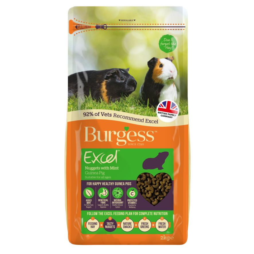 CLEARANCE Burgess Excel Guinea Pig Nuggets with Mint