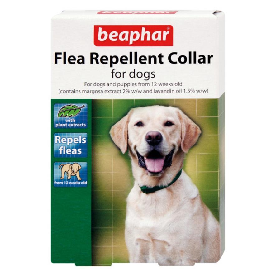 CLEARANCE BEAPHAR Flea Repellent Collar for Dogs 65cm