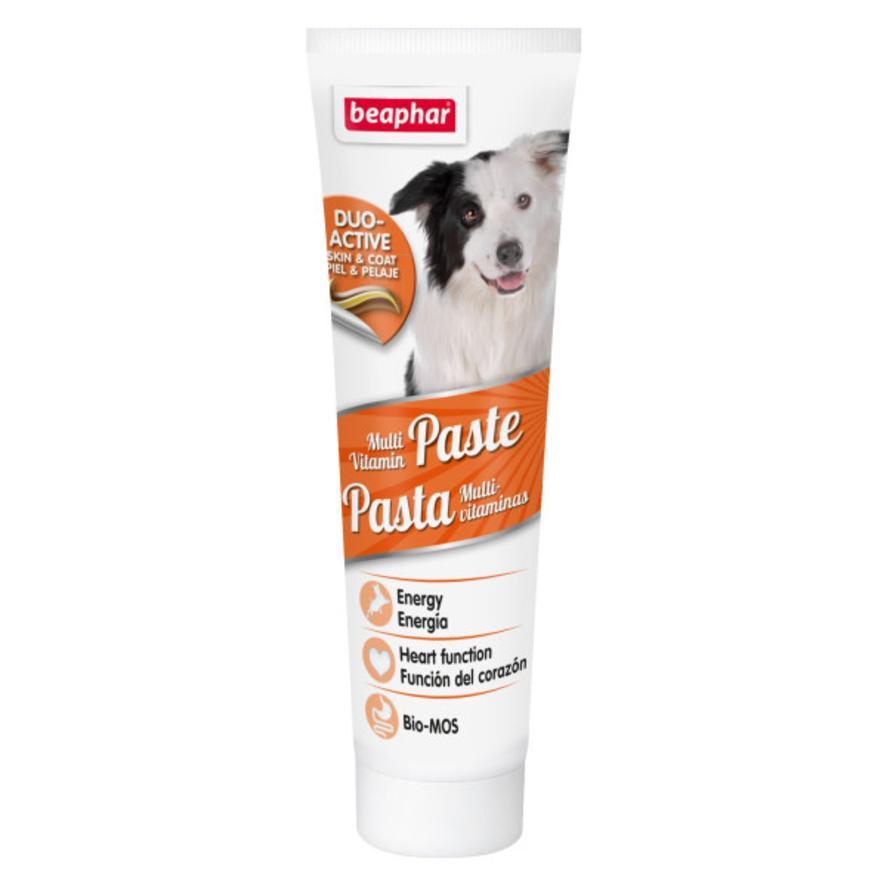 BEAPHAR Multi Vitamin Paste for Dogs 100gm