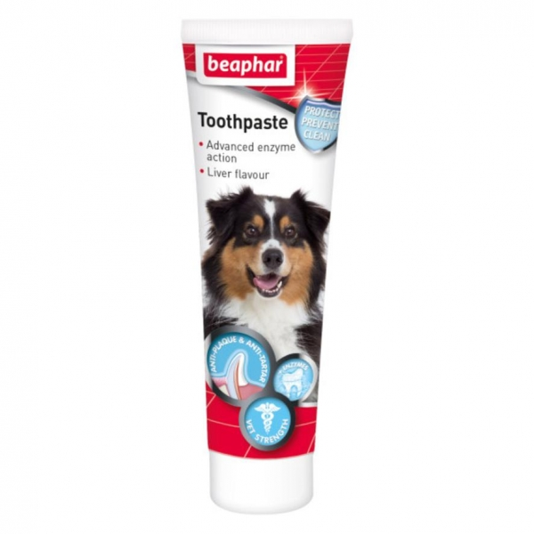 Beaphar Toothpaste 100gm