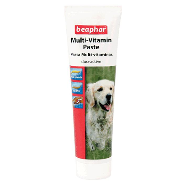 Beaphar Multivitamin Paste for Dogs