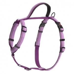 HALTI Walking Harness Purple