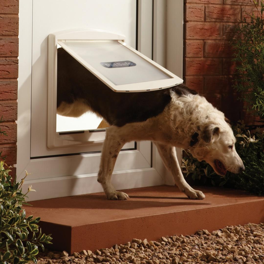 Petsafe Staywell Pet Door Large 2 Way White 760w Purely Pet