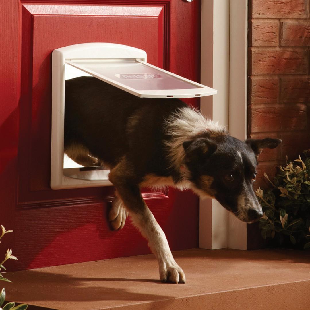 Petsafe Staywell Pet Door Medium 2 Way Brown 755b Purely Pet