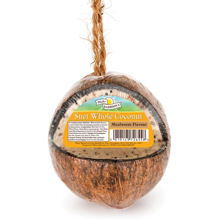 Walter harrisons suet whole coconut feeder purely pet for Whole coconut bird feeders