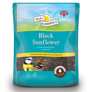 Walter Harrisons Black Sunflower