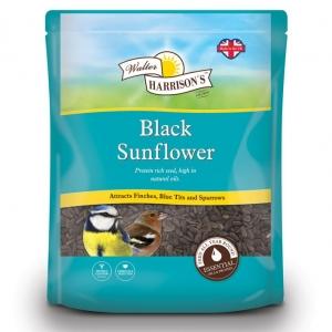 Walter Harrisons Black Sunflower