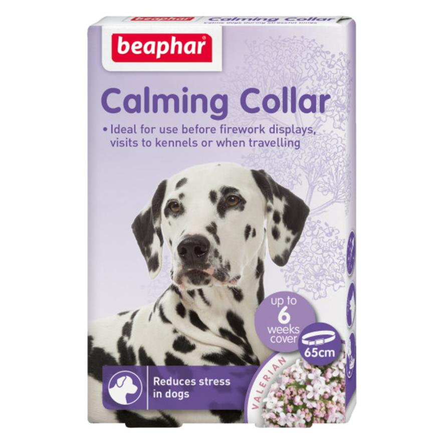 CLEARANCE BEAPHAR Calming Collar for Dogs 65cm