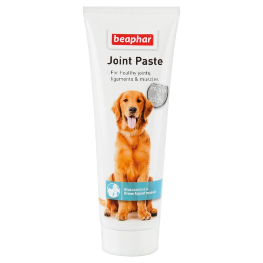 CLEARANCE BEAPHAR Joint Paste 250gm