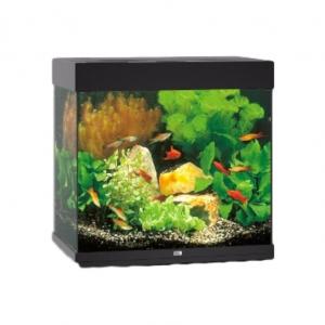 JUWEL Lido 120 Aquarium Black