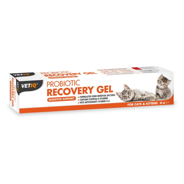 Mark and Chappell VetIQ Probiotic Recovery Gel for Cats 30ml