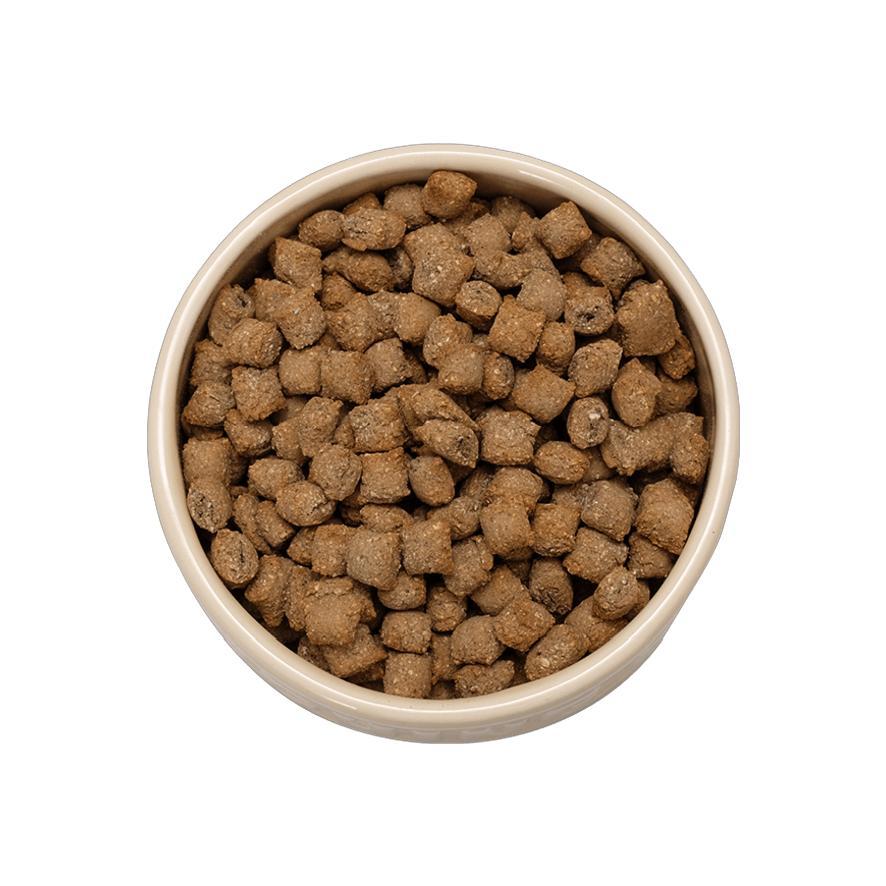 Crunchy Biscuit Meal Mixer Premium Quality Mixer Dog Treat