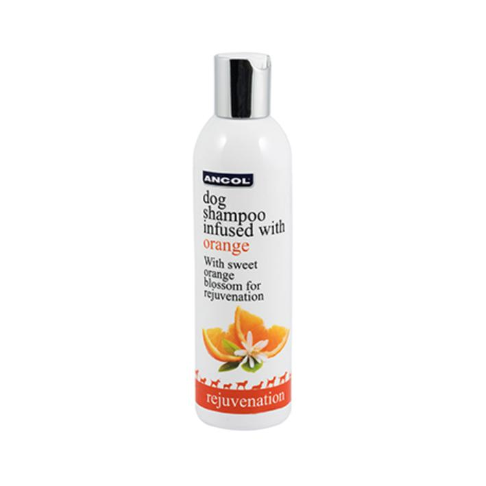 Ancol Orange Blossom Dog Shampoo
