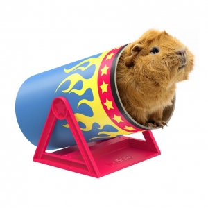 HayPigs Cavy Cannonball