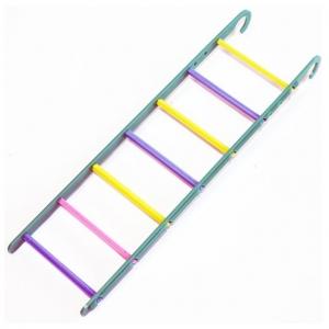 The Bird House Plastic Ladder