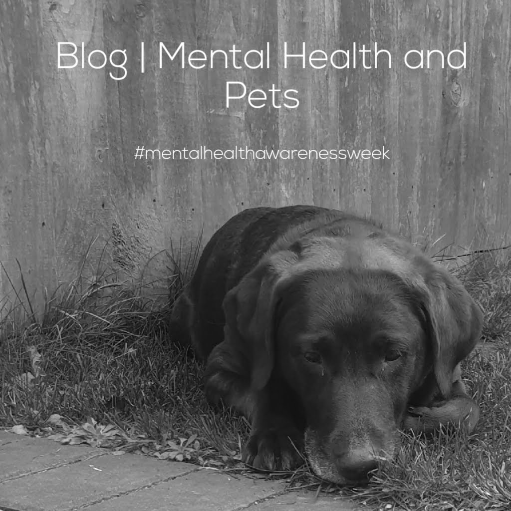 Dogs and Mental Health
