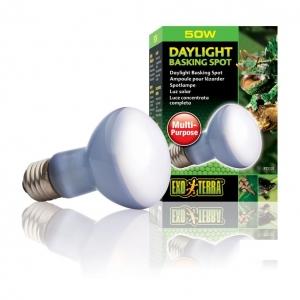 Exo Terra Daylight Basking Spot Light 50w