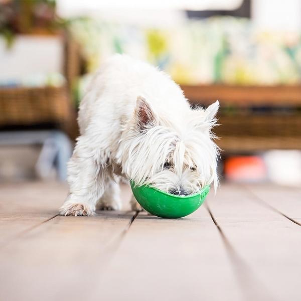 LickiMat WOBBLE Treat Bowl Green LIFESTYLE