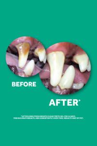 TropiClean Fresh Breath Oral Care Gel RESULTS