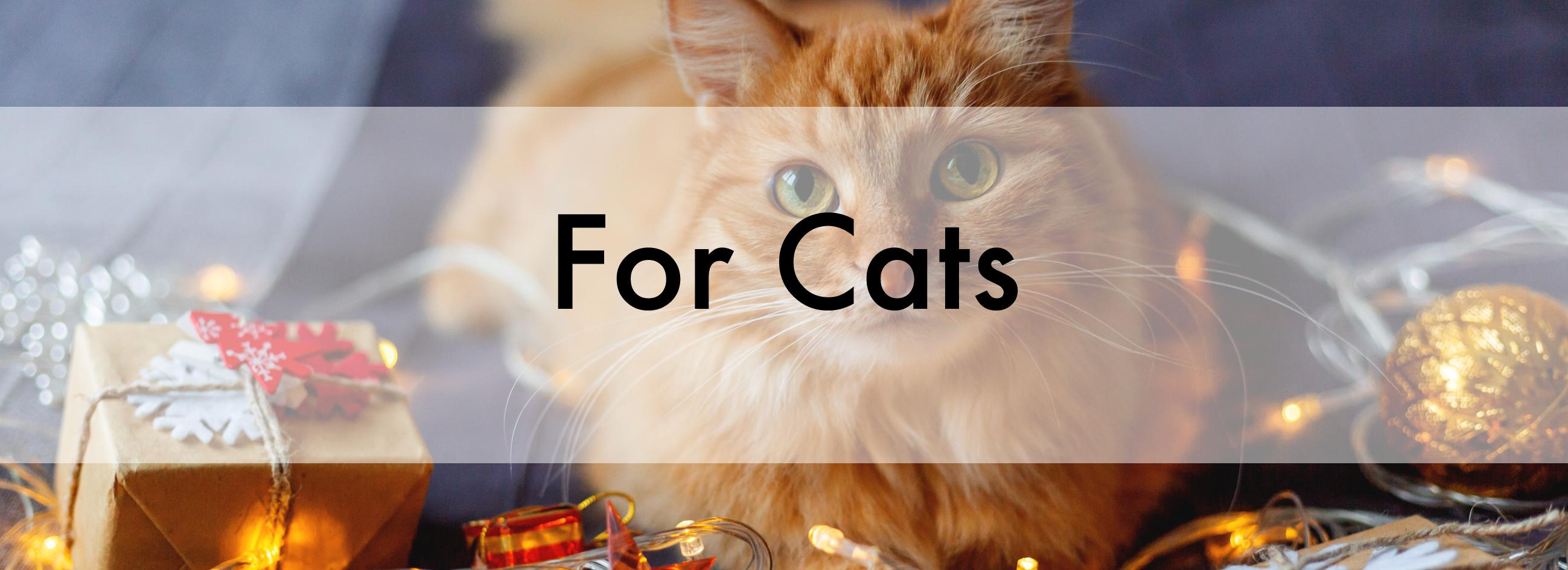Christmas Banner for Cats