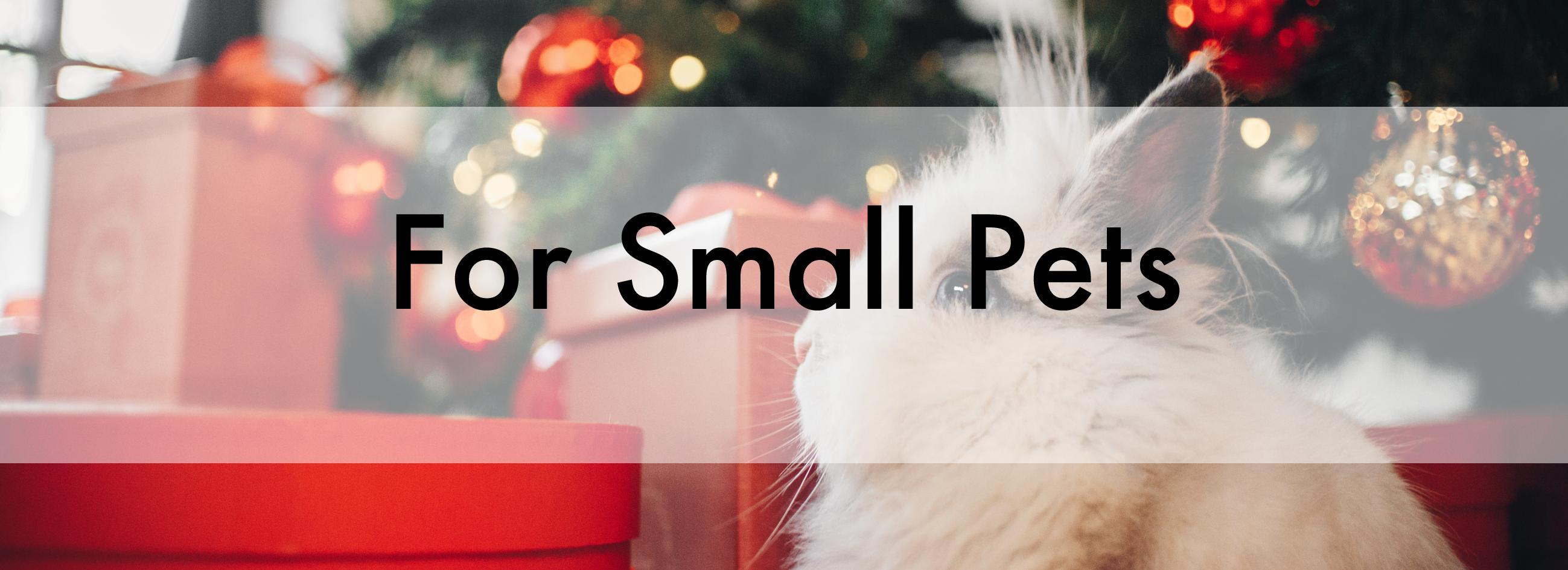 Christmas Banner for Small Pets