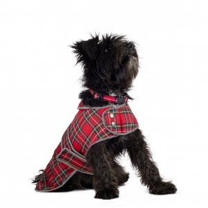 Anco Muddy Paws Highland Tartan Coat Red
