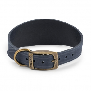 Ancol Timberwolf Hound Collar Blue