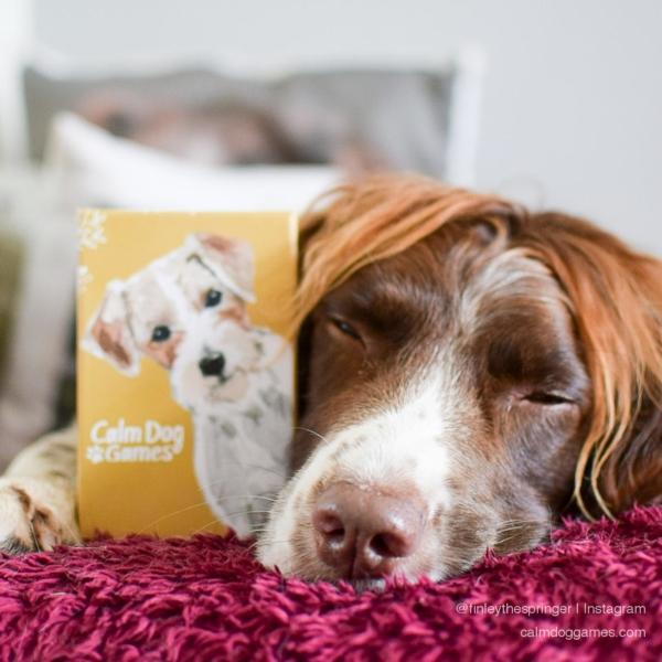 Calm Dog Games @finleythespringer