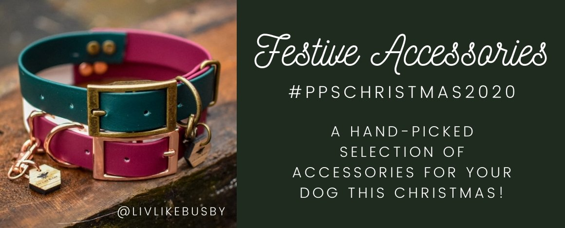 PPS Christmas Festive Accessories DOG