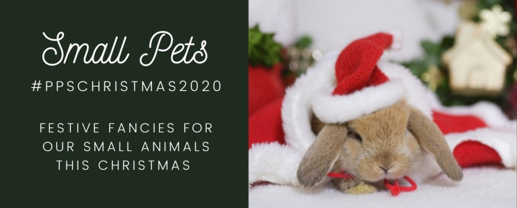 PPS Christmas Small Pets