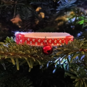 Ancol Reflective Gloss Cat Collar Red Hearts