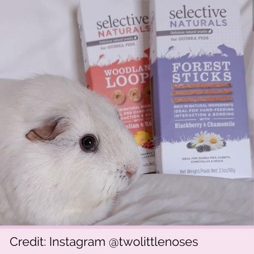 @twolittlenoses PP16543 PP16541 Selective Naturals Forest Sticks & Woodland Loops