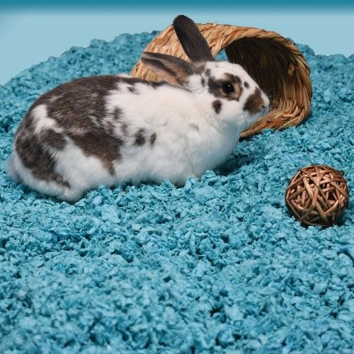 Carefresh Small Pet Bedding 10L Blue