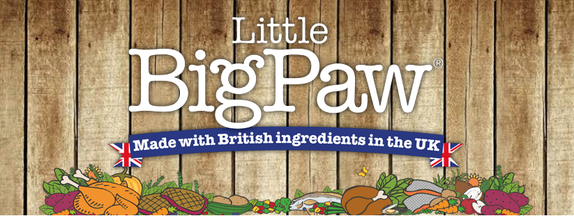Little BigPaw Logo