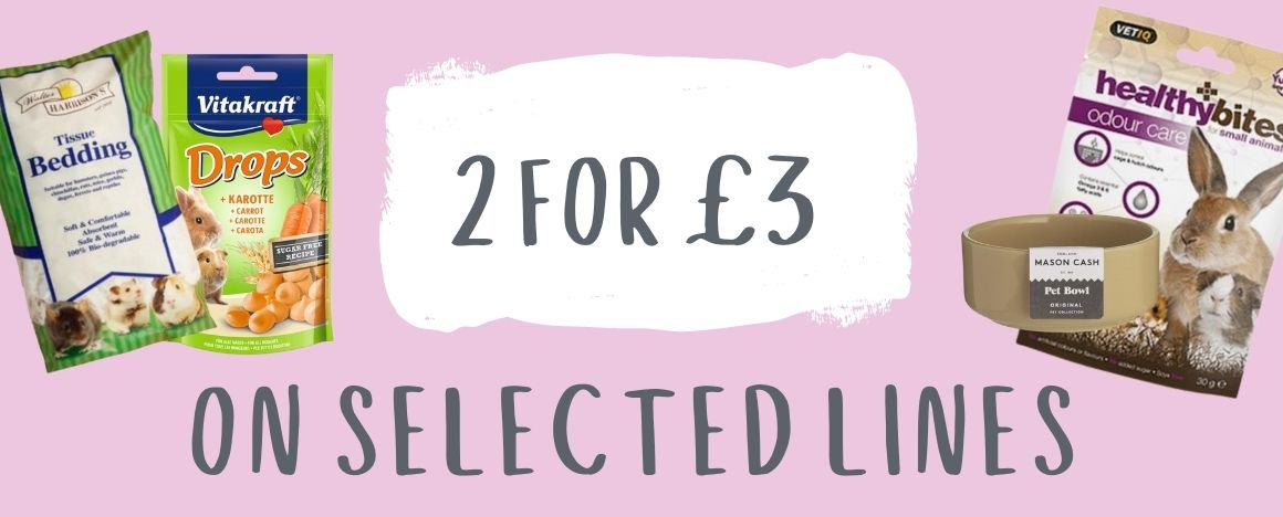 small Pet 2 for £3