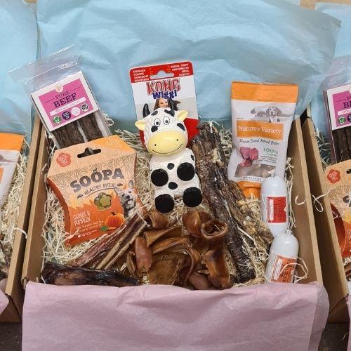 Bone Appetit Farmyard Treat & Toy Box