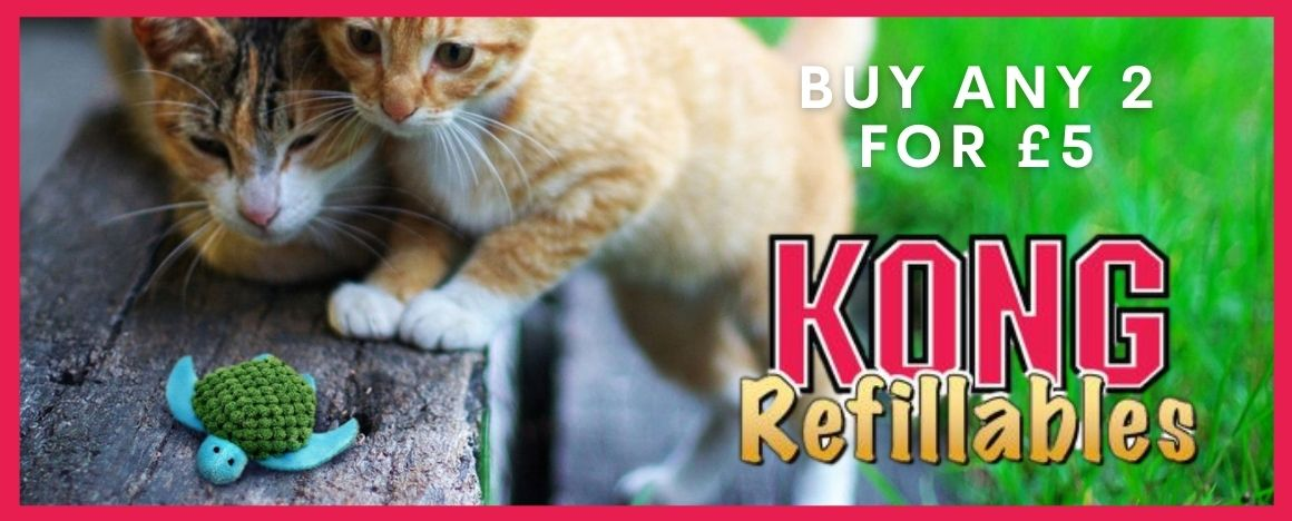 KONG CAT 2 for £5 Refillables Banner